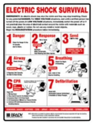 Workplace Electric Shock Survival Poster